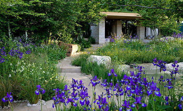 Start of annual chelsea flower show rose calendars news Winner chelsea flower show 2017