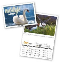 Wildlife in Britain Postage Saver Calendar