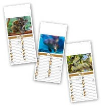 Slimline World Wildlife Compact Calendar